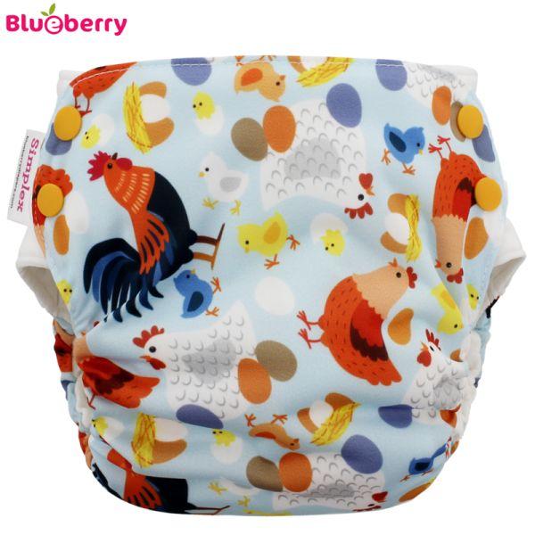 Blueberry - Simplex 2.0 Side Snap (AIO) - Bio-Baumwolle (GOTS) - Chickadee